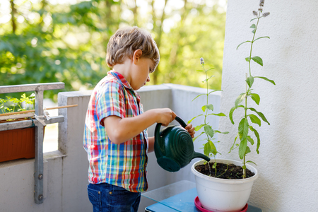 Active little preschool kid boy watering plants with water can at home on balcony Foto de archivo - 102944489
