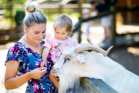 Adorable cute toddler girl and young mother feeding little goats and sheeps on a kids farm. Beautiful baby child petting animals in the zoo. woman and daughter together