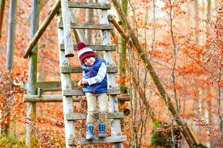 Cute little kid boy climing on treehouse in forest on autumn day
