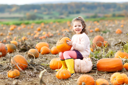 Adorable little kid girl having fun on pumpkin patch farm. Traditional family festival with children, thanksgiving and halloween concept. Cute child farmer sitting on huge pumpkin and smiling