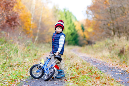 Little kid boy in colorful warm clothes in autumn forest park driving bicycle. Active child cycling on sunny fall day in nature. Safety, sports, leisure with kids concept. Casual fashion for children.