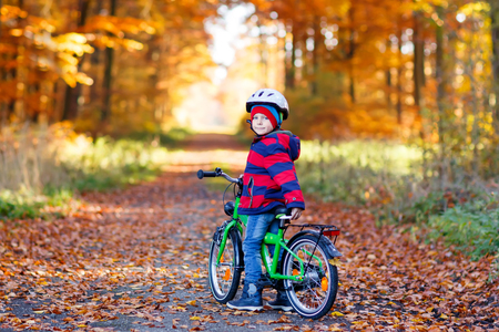 Little kid boy in colorful warm clothes in autumn forest park driving a bicycle. Active child cycling on sunny fall day in nature. Safety, sports, leisure with kids concept