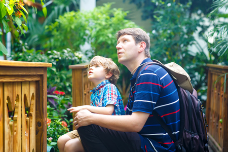 Father and preschool kid boy discovering flowers, plants and butterflies at botanic garden. Family, young man and son interested in biology. Active educational leisure with preschool child in museum 版權商用圖片