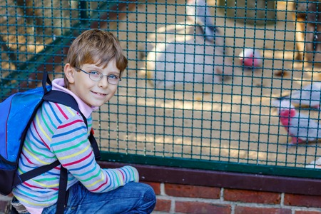 Little kid boy with glasses and backpack admire different birds like parrot in zoo park. Happy school child watching and observing animals and reptiles. Family leisure with kids or school trip