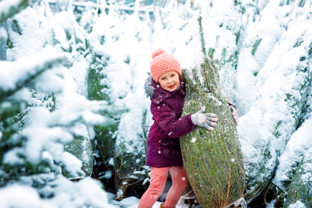 Cute little smiling kid girl shopping on christmas tree market. Happy child in winter clothes holding and choosing xmas tree on xmas market with lights on background on winter snow day