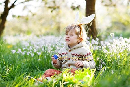 Cute little kid boy with bunny ears having fun with traditional Easter eggs hunt on warm sunny day, outdoors. Celebrating Easter holiday. Toddler finding, colorful eggs in green grass