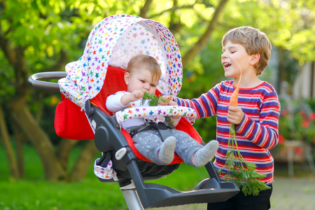 Little blond kid boy giving a carrot to baby sister. Happy siblings eating healthy snack. Baby girl sitting in pram or stroller. Brother and cute toddler outdoors, eating vegetables on summer day