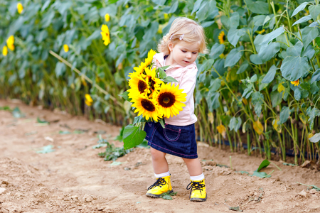 Cute adorable toddler girl on sunflower field with yellow flowers. Beautiful baby child with blond hairs. Happy healthy little daughter, smiling and holding bouquet. Outdoor portrait on late summer day. Reklamní fotografie