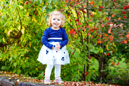 Cute little toddler girl making a walk through autumn park. Happy healthy baby enjoying walking with parents. Sunny warm fall day with child. Active leisure and activity with kids in nature.