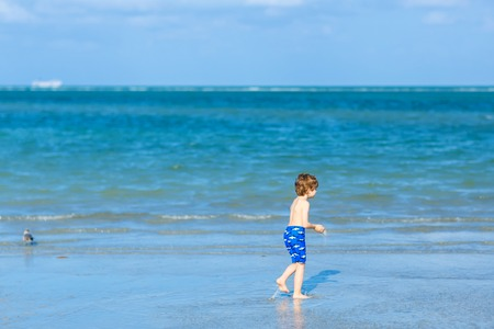 Active little kid boy having fun on Miami beach, Key Biscayne. Happy cute child running near ocean on warm sunny day. Healthy kid in swim trousers hunting seagull birds