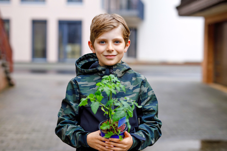Cute school kid blond boy planting seeds and seedlings of tomatoes in vegetable garden. Schoolkid making ecology project at school. Happy child on cold spring day.