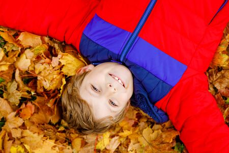 Little kid boy lying in autumn leaves in colorful fashion fall clothing. Happy healthy child having fun in autumn park on warm day. Cute school boy smiling and laughing