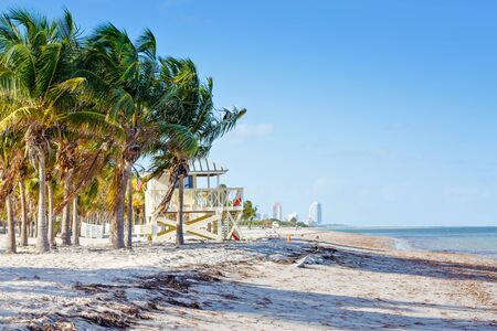 Beautiful Crandon Park Beach located in Key Biscayne in Miami, Florida, USA. Palms, white sand and security house