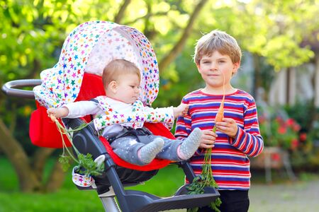 Little blond kid boy giving a carrot to baby sister. Happy siblings eating healthy snack. Baby girl sitting in pram or stroller. Brother and cute toddler outdoors, eating vegetables on summer day Foto de archivo - 129325381