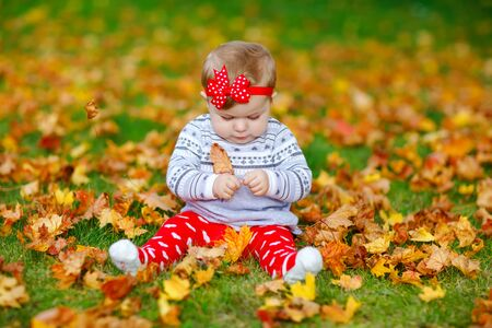 Adorable little baby girl in autumn park on sunny warm october day with oak and maple leaf. Fall foliage. Family outdoor fun in fall. child smiling. Foto de archivo - 129325448