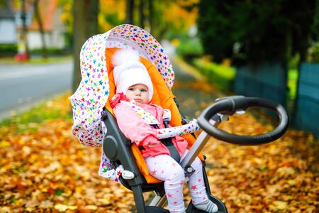 Cute little beautiful baby girl sitting in the pram or stroller on autumn day. Happy healthy child going for a walk on fresh air in warm clothes. Baby with yellow fall maple trees in colorful clothes Foto de archivo - 129325467