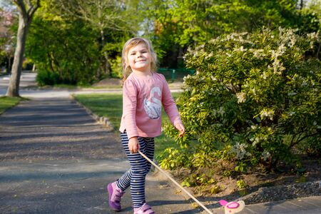 little toddler girl walking in park on sunny spring day. Cute adorable child playing with pushing wooden toy animal on wheels