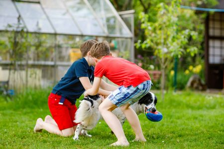 Two kids boys playing with family dog in garden. Laughing children, adorable siblings having fun with dog, with running and playing with ball. Happy family outdoors. Friendship between animal and kids.