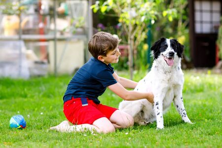 Active kid boy playing with family dog in garden. Laughing school child having fun with dog, with running and playing with ball. Happy family outdoors. Friendship between animal and kids. Reklamní fotografie
