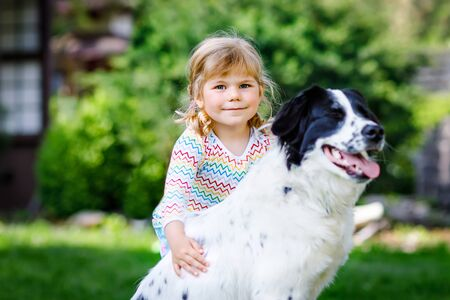 Cute little toddler girl playing with family dog in garden. Happy smiling child having fun with dog, hugging playing with ball. Happy family outdoors. Friendship between animal and kids