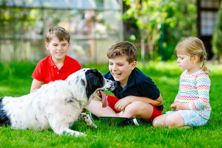 Two kids boys and little toddler girl playing with family dog in garden. Three children, adorable siblings having fun with dog. Happy family outdoors. Friendship between animal and kids