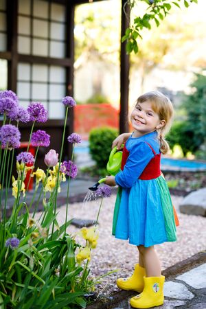 Beautiful little toddler girl in yellow rubber boots and colorful dress watering spring flowers with kids water can. Happy child helping in family garden, outdoors.