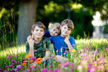 Portrait of three siblings children. Two kids brothers boys and little cute toddler sister girl having fun together on flowers meadow. Happy healthy family playing, walking, active leisure on nature