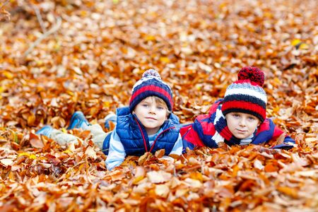 Two little twin boys lying in autumn leaves in colorful clothing. Happy siblings kids having fun in autumn forest or park on fall day. With casual fashion hats and scarfs. Friends playing together. Reklamní fotografie