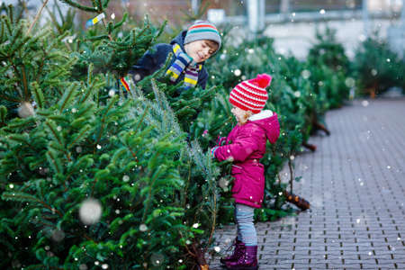 Two little siblings toddler girl and kid boy holding Christmas tree on a market. Happy children in winter fashion clothes choosing and buying Xmas tree in outdoor shop. Family, tradition, celebration Foto de archivo