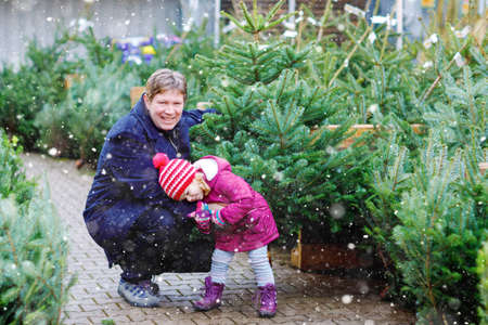 Little toddler girl and father holding Christmas tree on a market. Happy family, cute baby child daughter and middle aged man in winter fashion clothes choosing and buying Xmas tree in outdoor shop.