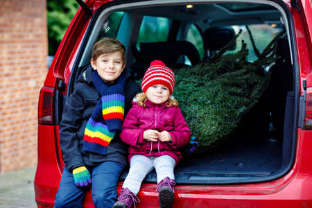 Adorable little toddler girl and school kid boy with Christmas tree inside of family car. Happy healthy children in winter fashion clothes buying big Xmas tree for traditional celebration.