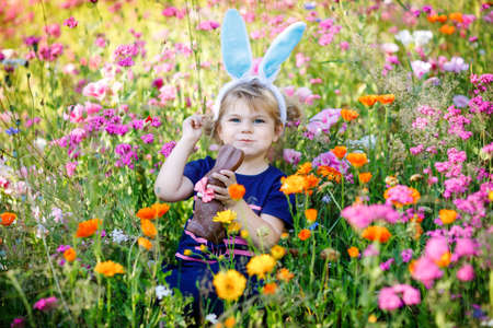 Portriat of adorable, charming toddler girl with Easter bunny ears eating chocolate bunny figure in flowers meadow. Smiling happy baby child on sunny day with colorful flowers, outdoors.