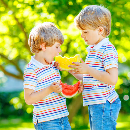 Two little preschool kid boys with blond hairs eating red and yellow watermelon in summer garden. Funny happy children smiling and tasting healthy fruit snack on sunny day. Siblings, twins and best friends outdoors