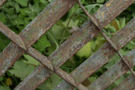 Old rusty grate fence against the background of green plants. Stock Photo