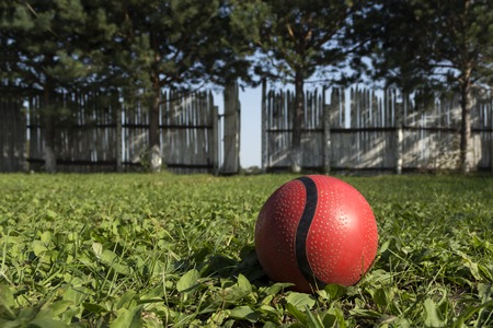 A lone red ball lies on the grass left by the child when the gate is open on a white fence.