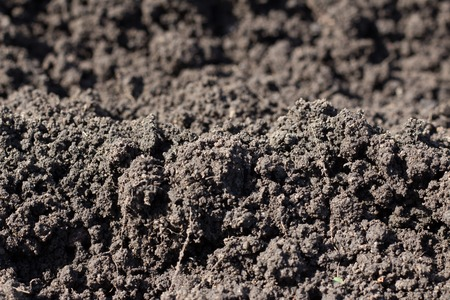 Close-up of a black earth texture with a blurry background. Stock Photo