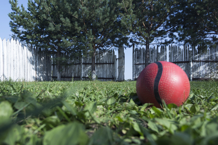 A lonely red ball lies on the green grass in the courtyard against the background of a white fence with an open wicket. In the country estate a garden with trees. The concept of loneliness or kidnapping.