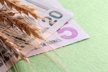Weizenähren auf Dollarnoten. Fünfundzwanzig US-Dollar. Das Konzept der Waren-Geld-Beziehungen. Grüner Hintergrund.