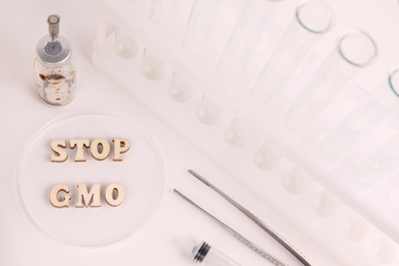 Laboratory subjects: test tubes, flasks, nippers, syringe, tweezers, petri dish. The phrase STOP GMO written in wooden letters. The concept of combating genetically modified products. Stockfoto