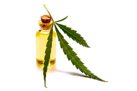 Marijuana leaf and bottle with yellow oil on a white table. Wild hemp or medical cannabis. Isolate