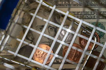 Portrait of a Jackson with twenty US dollars and coins under the bars of a shopping basket. The concept of discounts and sale. Criminal online or offline business or inflation, financial crisis.
