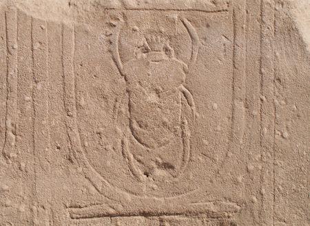 Egyptian Hieroglyphs. Scarab  photo