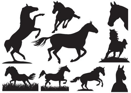 carreras de caballos: Colecci�n de silueta de caballo. Ilustraci�n