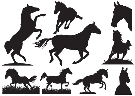large group of animals: Horse silhouette collection. illustration Illustration