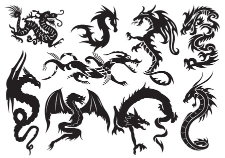 black and white dragon: Dragons. illustration