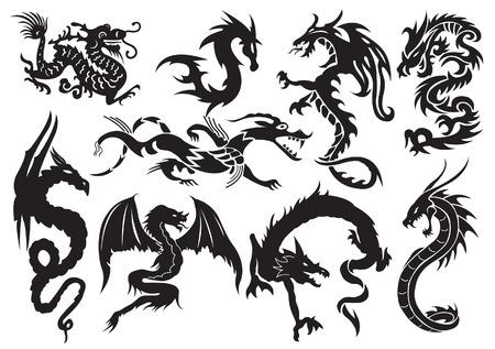reptiles: Dragons. illustration