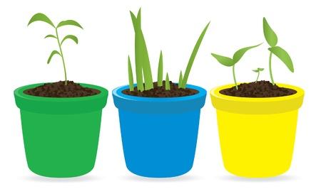 kezdetek: Potted seedling. Vector illustration Illusztráció