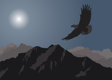 montane: Eagle flying over the mountains. Illustration
