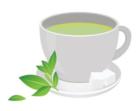 Green tea cup. Vector for you design Stock Vector - 16446943