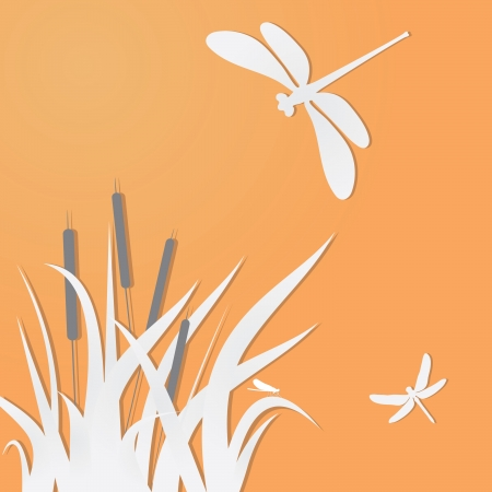 Dragonflies and grass.  Vector
